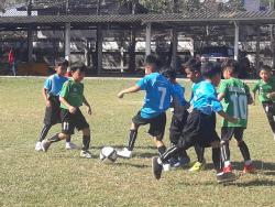 แข่งขันฟุตบอลอนุบาล